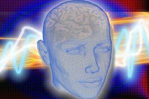 Il contributo delle neuroscienza per l'apprendimento