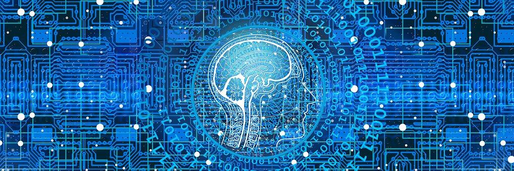 La mente è un prodotto del cervello