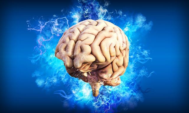 Neuroscienza – quando la biologia incontra la psicologia